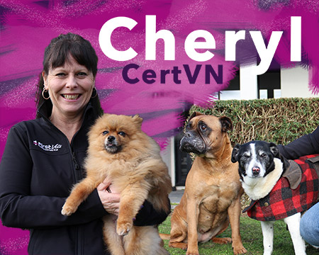 Cheryl - First Vets Veterinarian Nurse